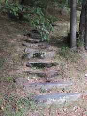 Stone path leading up (Jo E Stan) Tags: stone stairs forest pierre forêt escaliers manoirhovey