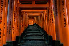 Japan 2014 (mariodb88) Tags: trip summer japan tokyo kyoto hiroshima traveller osaka