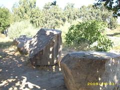 IMG_3444 (romir59) Tags: efes artemisa turcia zeita templu