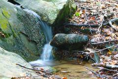 la cascatella ai Lagoni (settebello301) Tags: appenninotoscoemiliano cascata cascatella lagoni appenninoparmense parcocentolaghi