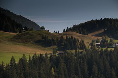 2014-09-26_0340.jpg (czav gva) Tags: switzerland derborance