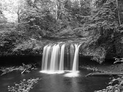 img3715-med (matthauer) Tags: 120 film oregon waterfall bronica asteria buttecreek bronicaetrsi scottsmill buttecreekfalls