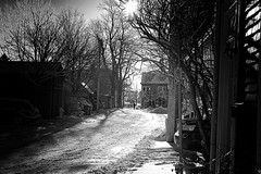 Snowy street (halifaxlight) Tags: canada novascotia halifax downtown city urban street houses trees figure walking snow cars noparking shadows bw