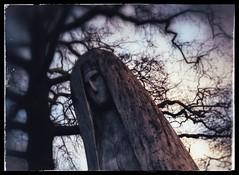 Mary (PattyK.) Tags: ioannina giannena giannina epirus ipiros balkans hellas ellada greece grecia griechenland europe europeanunion whereilive mycity statue mary february 2013 amateurphotographer ιωάννινα γιάννενα ήπειροσ βαλκάνια ελλάδα ευρώπη άγαλμα παναγία φεβρουάριοσ