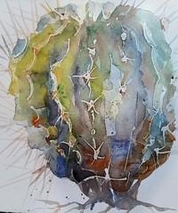 Cactacea (sushipulla) Tags: cactus succulent plant plants nature barrelcactus art artwork paint painting watercolour watercolors watercolours