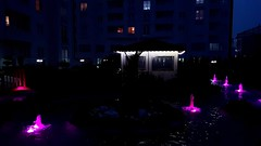 Durupark Sitesi (Yakup YILMAZ) Tags: site durupark pendik istanbul gece dark night landscape havuz water waterside pool tree stone camellia kamelya ışık light black blackandwhite house windows samsung galaxys7edge f17