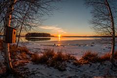 Orange sunset (vilomaki) Tags: sunset winter snow samyang landscape evening samyang8mmf35 lake finland