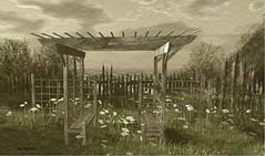 Arbor Bench....GOOSE (zaziaa resident) Tags: goose wonderouslove sim cosmopolitain event bench arbor garden sits friends