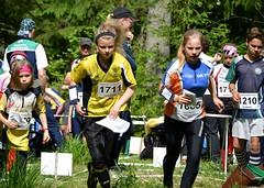 DSC_6714 (RainoL) Tags: summer sport june finland rr running v orienteering runner lynx nuuksio hs 2014 suunnistus orienteer orientering clb ok77 vihti vichtis nuuksionationalpark tervalampi 201406 20140607 suuntogames
