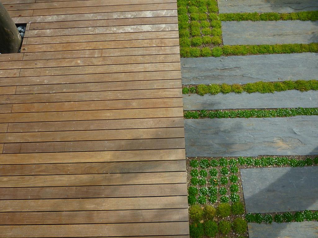 Holz   Pflanzen   Schiefer (Jörg Paul Kaspari) Tags: Modern Garden Jardin  Minimal