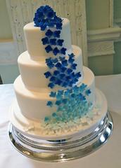 Blue Hyacinths Cake
