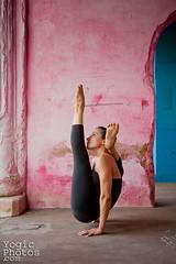 IMG_2555ChristineHewitt_YogicPhotos (yogicphotos) Tags: travel woman india vertical yoga pose women maria mysore asana marias verticle christinehewitt armbalance chakorasana footbehindhead yogaphotography yogaphotographer yogicphotos wingpose mariashalimova