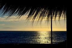 The Ocean Sunset Tenerife 8697 (stranger_bg) Tags: ocean travel blue sunset sea sky espaa sun tree colors yellow clouds islands la photo spain skies tour border picture stranger espana cielo dreams tenerife canary paysage palma gomera