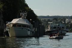 Kursschiff MS Stein am Rhein ( Schiff - Bateau - Ship ) mit Schlauchboot Sevylor Super Caravelle XR86GTX ( Supercaravelle - Gummiboot ) auf dem Rhein bei Schaffhausen im Kanton Schaffhausen in der Schweiz (chrchr_75) Tags: rio ro river boot schweiz switzerland boat europa barco ship suisse swiss fiume super rivire juli reno christoph svizzera bateau fluss rhine rhein schiff strom rin rijn skib jolla canot dinghy bote schlauchboot  caravelle 2014 schip rivier  suissa joki rzeka schiffahrt jolle gummiboot flod sloep rhin chrigu alus  fartyg 1407 sevylor  passagierschiff kursschiff rhenus  chrchr hurni chrchr75 supercaravelle chriguhurni kursschiffahrt passagierschiffahrt albumschweizerkursschiffe chriguhurnibluemailch albumrhein gummiboote xr86gtx hurni140706