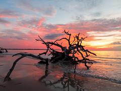 Driftwood Beach (pmcdonald851) Tags: sky beach water clouds sunrise canon ga georgia sand cloudy decay scenic atlantic driftwood jekyllisland atlanticocean deadwood cloudporn decaying jekyll glynn jekyllislandga skyporn driftwoodbeach s120 canons120 sunriseporn