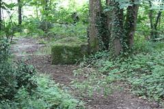 SAINT REMY LA VARENNE (PURN MICHEL 49) Tags: pierre carriere vieillepierres