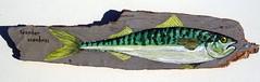 Maquereau (Poisson Flott) Tags: wood painting paint fisch peinture peixe  holz wald vis hout pintura bois  lak bosco pesce  malerei pintando  pittura spuiten     lemn     pete vopsea  vopsire