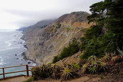 Big Sur (Pedja Photo (Pedja G)) Tags: california summer vacation usa bigsur pch a200 pacificcoasthighway 2014 scenicroute californiastateroute1 sonyalpha pedjag predragg
