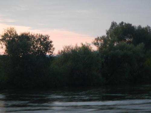 DSCN0426
