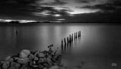 Resilience (Mike Hankey.) Tags: longexposure sunset blackandwhite landscape published portstephens shoalbay focus14