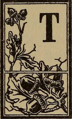 Image from page 97 of