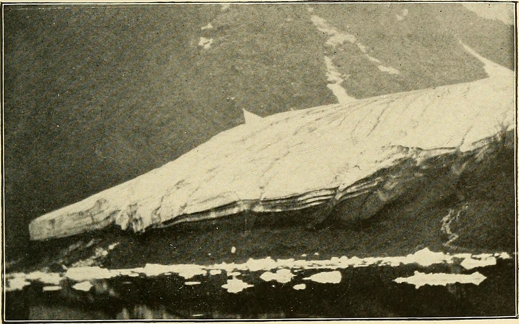 "Image from page 472 of ""Northward over the great ice : a narrative of life and work along the shores and upon the interior ice-cap of northern Greenland in the years 1886 and 1891-1897, with a description of the little tribe of Smith Sound Eskimos, the mo"