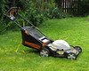 Phew, all done for this week! (diffuse) Tags: electric cord cut lawn cable lawnmower extension mower powercord 114 mowed 114picturesin2014 14jul03