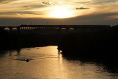 Eisenbahnbrcke Eglisau ( Rheinbrcke - Brcke - Bridge - Pont - Viadukt => Baujahr 1895 - 1897 => Lnge 457m ) ber den Rhein ( Hochrhein - Fluss - River ) im Kanton Zrich in der Schweiz (chrchr_75) Tags: chriguhurnibluemailch christoph hurni schweiz suisse switzerland svizzera suissa swiss kantonzrich chrchr chrchr75 chrigu chriguhurni 1408 august 2014 hurni140808 august2014 rhein rhin reno rijn rhenus rhine rin strom europa albumrhein fluss river joki rivire fiume  rivier rzeka rio flod ro
