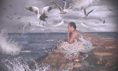 I need relax! (oroyplata.) Tags: sea relax mar seagull fine nubes conceptual rafa gaviotas plumas macas oroyplata rafamaciasphotography