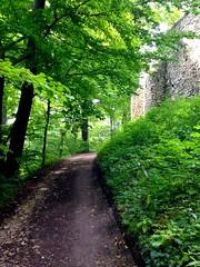Lipowiec (Rrrodrigo) Tags: road castle forest poland lipowiec
