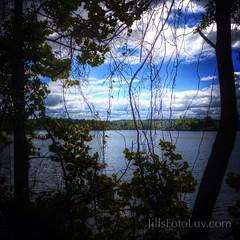 A Tangled Web (jillsfotoluv) Tags: vacation nature water clouds virginia woods escape scenic richmond va chesterfield rva