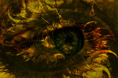 Vision Quest (etva101) Tags: eye texture photom