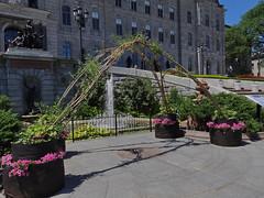 Les jardins du Parlement - Parliament's Gardens - Qubec (Jacques Trempe 2,100K hits - Merci-Thanks) Tags: fountain garden quebec jardin parliament parlement fontaine assemblee nationale