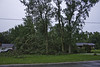 Storm Damage on Oldcastle Road (awaketoadream) Tags: summer ontario canada storm tree canon eos poplar down september cottonwood damage eastern 2014 deltoides populus 60d