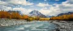 _64A8206 Granite Creek Autumn (Ed Boudreau) Tags: autumn mountains fall alaska clouds creek landscape fallcolors autumncolors granitecreek alaskamountains alaskalandscape alaskaautumn alaskacreek
