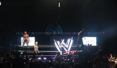 Randy Orton Roman Reigns