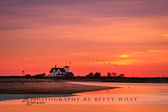 Sunset at Stage Harbor, Cape Cod (betty wiley) Tags: ocean lighthouse beach birds river harbor capecod stage massachusetts newengland chatham cape oyster cod