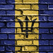 National Flag of Barbados on a Brick Wall