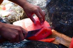 Sweet! (Leitratista) Tags: watermelon red sweet harvest pick ripe fruit peel nikonshots nikond3400 nikoncapture 1855mmafpvrkit kitlens moment explore inspiration