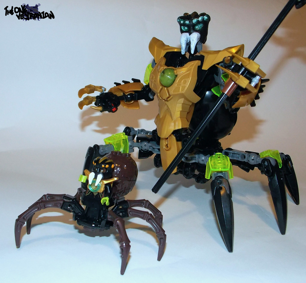 The World's Best Photos of chima and spider - Flickr Hive Mind