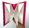 Corinne Welch - The Art of the Folded Napkin 2
