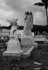 Shhh... (alex.e.lipton) Tags: blackandwhite cemetery statue angel dead death still scary quiet florida statues calm creepy angels keywest