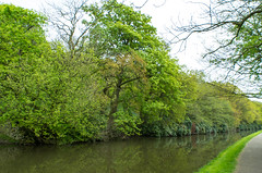 L1000108 (suey_11) Tags: leica t canal canals leedsliverpoolcanal riddlesden t701