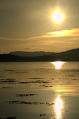 Etive Sun (Poltrebost) Tags: sun seaweed reflection water scotland argyll loch saltwater etive bute taynuilt