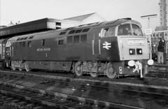 B&W Cardiff Capitals - D1023 (Sir Hectimere) Tags: britishrail railtours railwaylocomotives class52 dieselhydraulics railblue d1023 trainsandrailways westernfusilier specialtrains westerndiesels capitalsunitedexpress