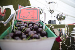 Kent_County_Show_2014_027