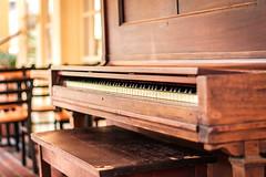 El sonido de un piano mudo.(The sound of a mute piano) (AlbertoCuba) Tags: park winter orlando fl