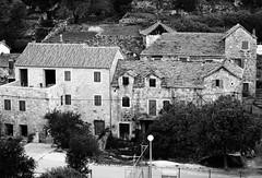 Renewed (roksoslav) Tags: nikon croatia dalmatia dol 2014 bra nikkor50mm d5100