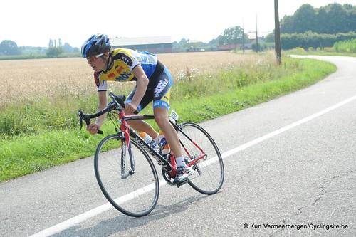 Geel Oosterlo  (205)