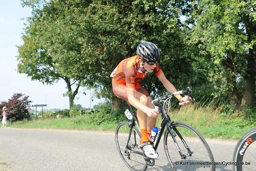 Geel Oosterlo  (131)